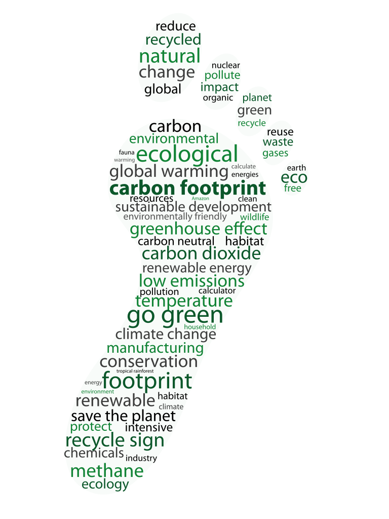 footprints essay Zhang 1 yinan zhang mr rauch ap environmental science 20 january 2015 human ecological footprint and sustainability of the earth nowadays, the human society.
